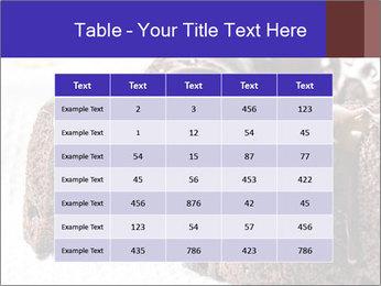 0000079276 PowerPoint Templates - Slide 55