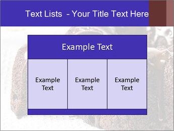 0000079276 PowerPoint Templates - Slide 59
