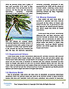 0000079295 Word Templates - Page 4