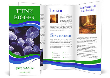 0000079296 Brochure Templates
