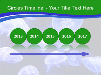 0000079296 PowerPoint Templates - Slide 29