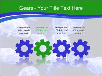 0000079296 PowerPoint Templates - Slide 48