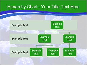 0000079296 PowerPoint Templates - Slide 67