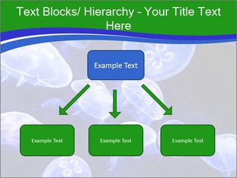 0000079296 PowerPoint Templates - Slide 69