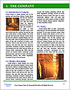 0000079296 Word Templates - Page 3