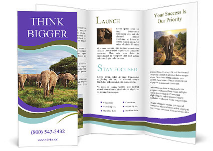0000079303 Brochure Template