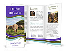 0000079303 Brochure Templates