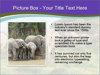 0000079303 PowerPoint Templates - Slide 13