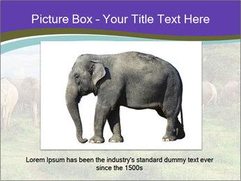 0000079303 PowerPoint Templates - Slide 16