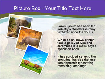 0000079303 PowerPoint Templates - Slide 17