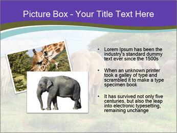 0000079303 PowerPoint Templates - Slide 20