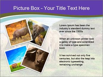0000079303 PowerPoint Templates - Slide 23