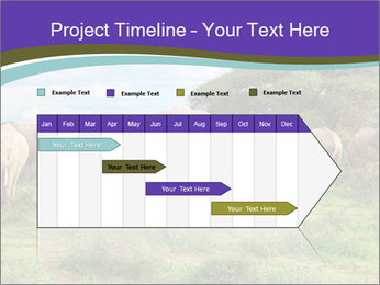 0000079303 PowerPoint Templates - Slide 25
