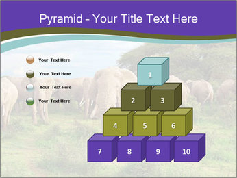 0000079303 PowerPoint Templates - Slide 31