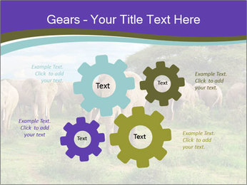 0000079303 PowerPoint Templates - Slide 47
