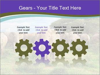 0000079303 PowerPoint Templates - Slide 48
