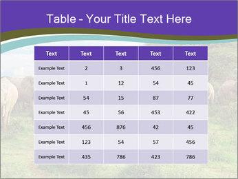 0000079303 PowerPoint Templates - Slide 55