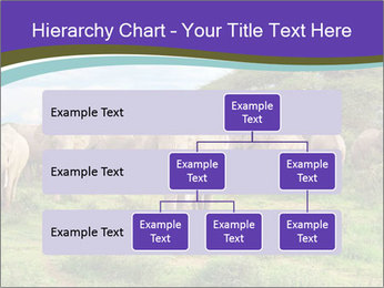0000079303 PowerPoint Templates - Slide 67