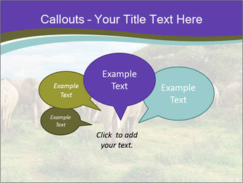 0000079303 PowerPoint Templates - Slide 73