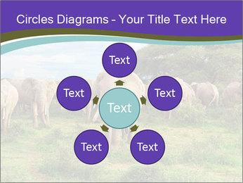 0000079303 PowerPoint Templates - Slide 78