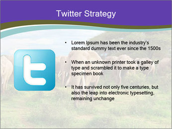 0000079303 PowerPoint Templates - Slide 9