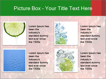 0000079304 PowerPoint Templates - Slide 14