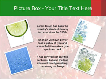 0000079304 PowerPoint Templates - Slide 24