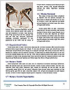 0000079313 Word Template - Page 4