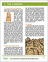0000079314 Word Template - Page 3