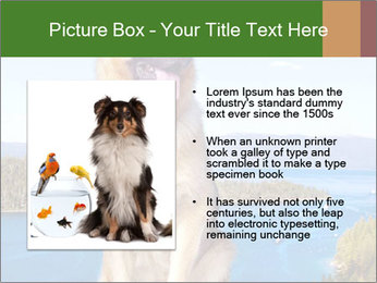 0000079315 PowerPoint Templates - Slide 13