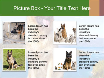 0000079315 PowerPoint Templates - Slide 14