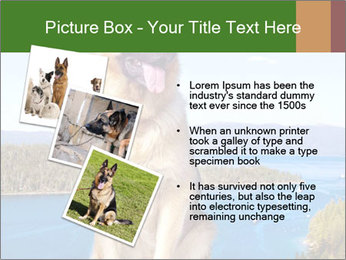 0000079315 PowerPoint Templates - Slide 17