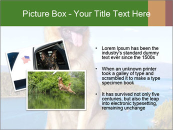 0000079315 PowerPoint Templates - Slide 20