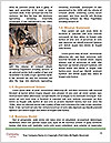 0000079315 Word Template - Page 4