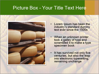 0000079323 PowerPoint Templates - Slide 13