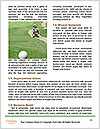 0000079324 Word Templates - Page 4