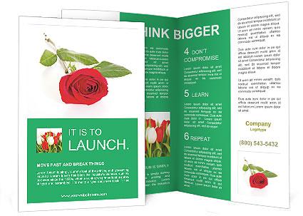 0000079329 Brochure Template