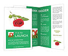 0000079329 Brochure Templates
