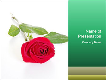 0000079329 PowerPoint Template - Slide 1