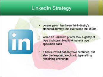 0000079329 PowerPoint Template - Slide 12