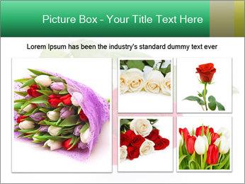 0000079329 PowerPoint Template - Slide 19