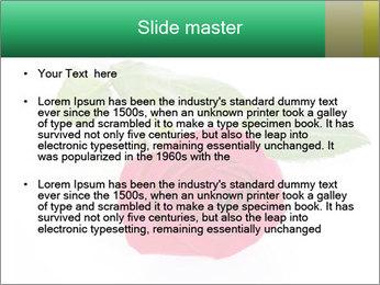 0000079329 PowerPoint Template - Slide 2