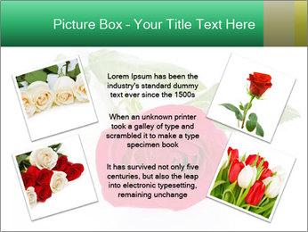 0000079329 PowerPoint Template - Slide 24