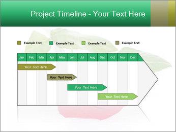 0000079329 PowerPoint Template - Slide 25