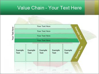 0000079329 PowerPoint Template - Slide 27