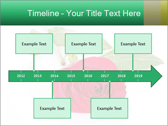 0000079329 PowerPoint Template - Slide 28
