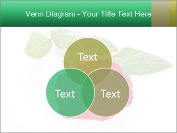 0000079329 PowerPoint Template - Slide 33