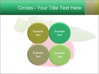 0000079329 PowerPoint Template - Slide 38