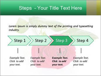 0000079329 PowerPoint Template - Slide 4