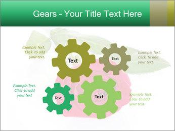 0000079329 PowerPoint Template - Slide 47